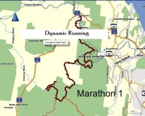 kauri-half-marathon-course-3