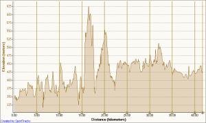 kauri-half-marathon-course-4